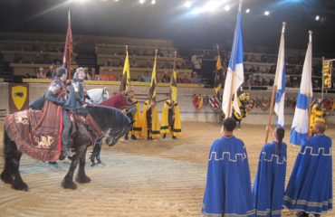 Winner of the 4 Passes to a Medieval Times show in Toronto is…..