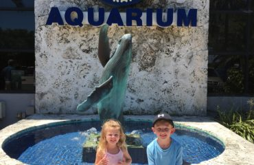 Our Visit to Mote Aquarium in Sarasota