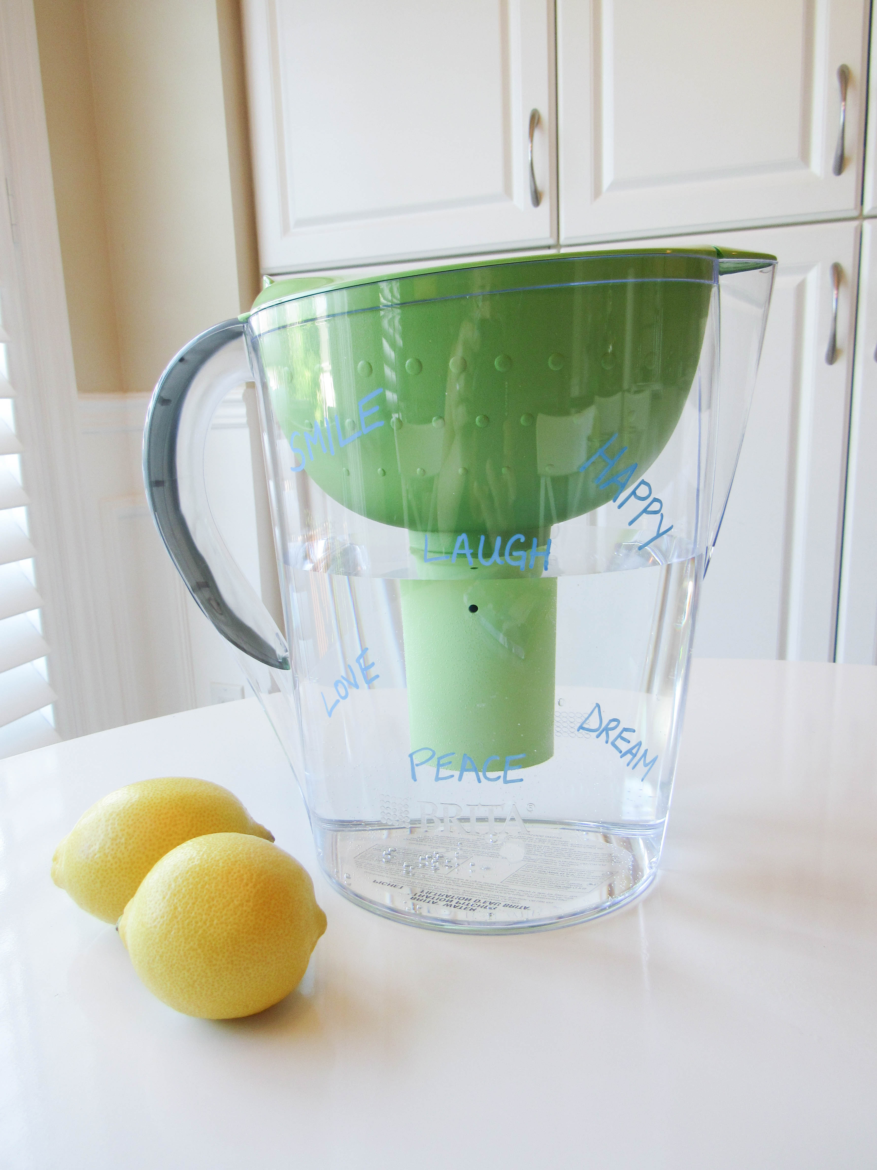 Brita Water Filter- Livin' Life with Style